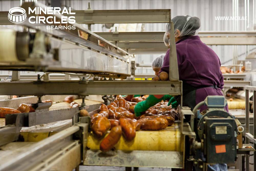 NTN SNR's Food Al Grease to optimize food production industry